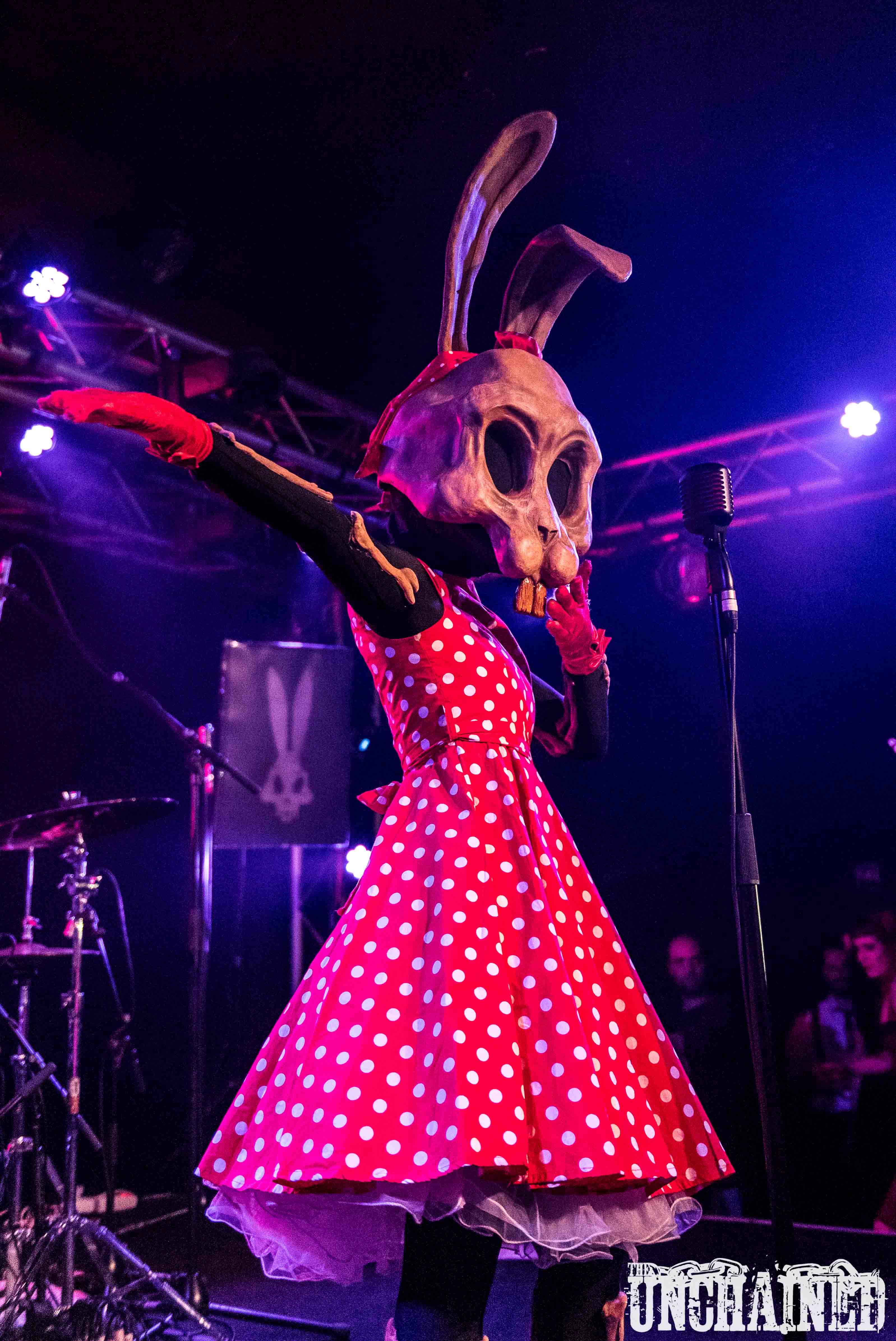 Dead Bones Bunny 5